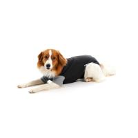 BUSTER Body Suit for dogs, black/grey, 75 cm, size XXXL