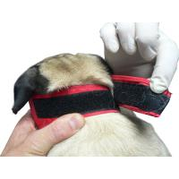 BUSTER Vet Nylon muzzle for brachycephale dog, S