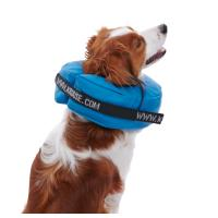 BUSTER inflatable collar in blue, PVC