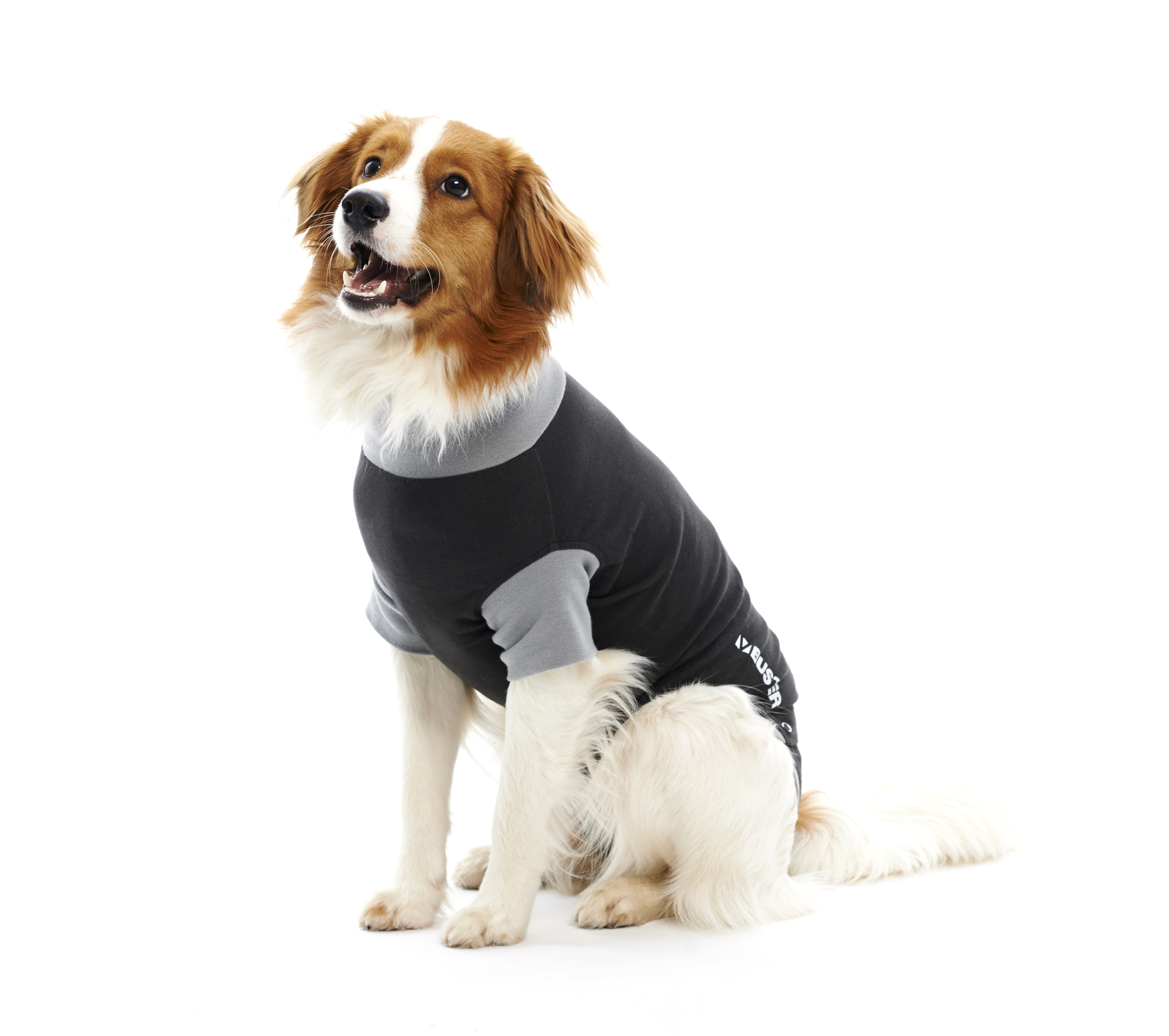 BUSTER Body Suit Classic for dogs, black/grey, 76 cm, XXXL